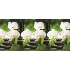 Кухонный фартук АБС Орхидея белая (600*3000*1,5мм) Европа